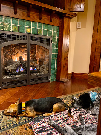 We stayed in a cabin at FivePine Lodge, which I highly recommend. (Call for dog-friendly cabins.) Although I almost always prefer to sleep in our vehicle when traveling, it was wonderful to have a fireplace, especially the morning it got down to 6°F.