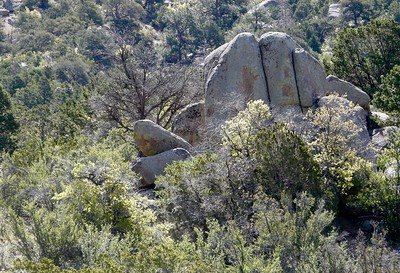 The trail starts in the city park and continues in the Sandia Mountain Wilderness.
