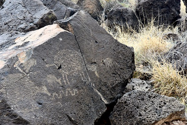 Pueblo people created most of the petroglyphs, but in the Rinconada Canyon, we could see petroglyphs by Spanish as well, including crosses and possibly the sheep.