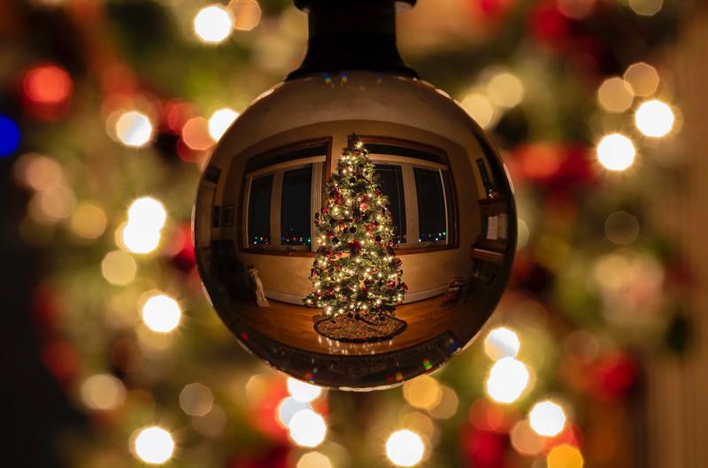 Christmas Ball, 2020