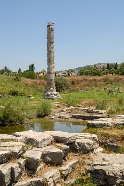 Temple of Artemis, Selçuk