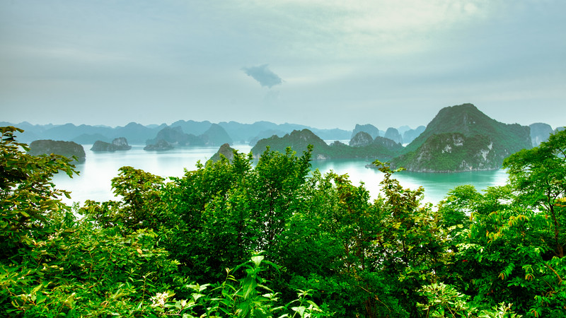 Hạ Long Bay - Photo 1