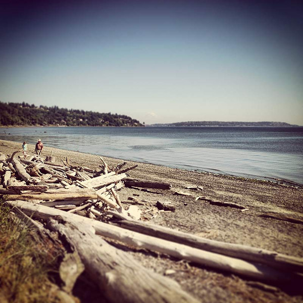 Beach at Discovery Park in Seattle, Washington