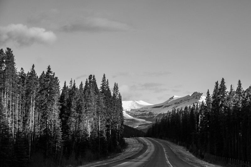 The Trans Canada Highway