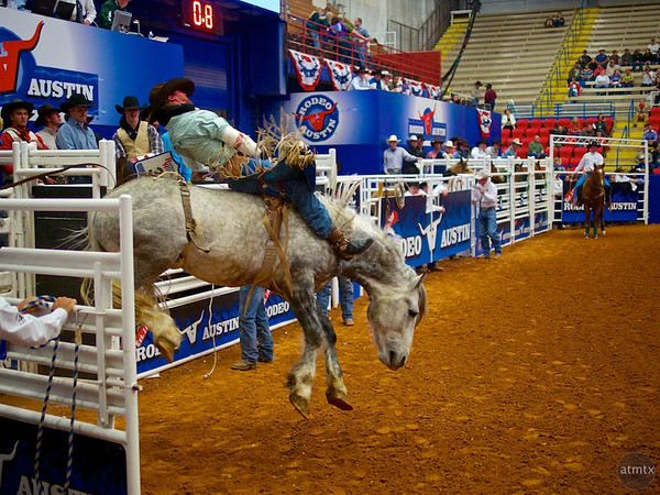Bucking Bronco 6, Rodeo Austin - Austin, Texas