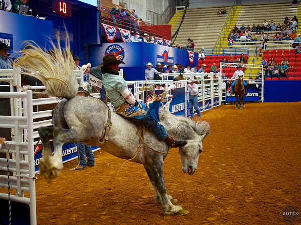 Bucking Bronco 8, Rodeo Austin - Austin, Texas