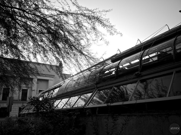 Moody Greenhouse, University of Texas - Austin, Texas
