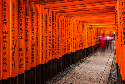 The Magnificent Torii Gates at Fushimi Inari Shrine (Kyoto, Japan 2015)