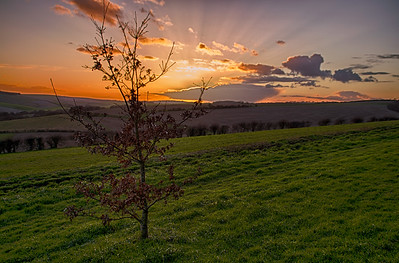 Another South Downs Sunset