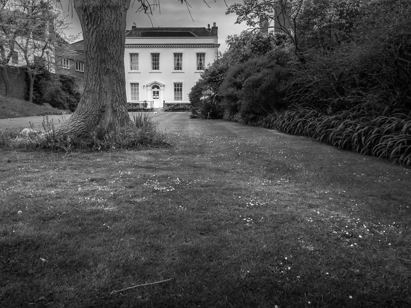 A Lewes Garden