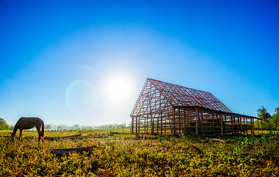 The tabaco farms of Viñales (Pinar del Rio, Cuba 2019)