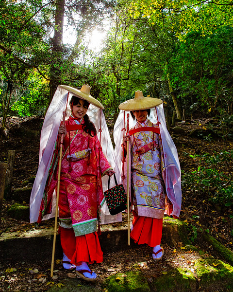 Pilgrimage at the Shinomiya Shrine (Miyajima, Japan 2015)