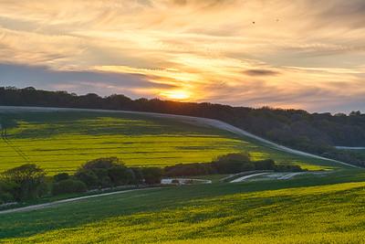 Sussex Twilight