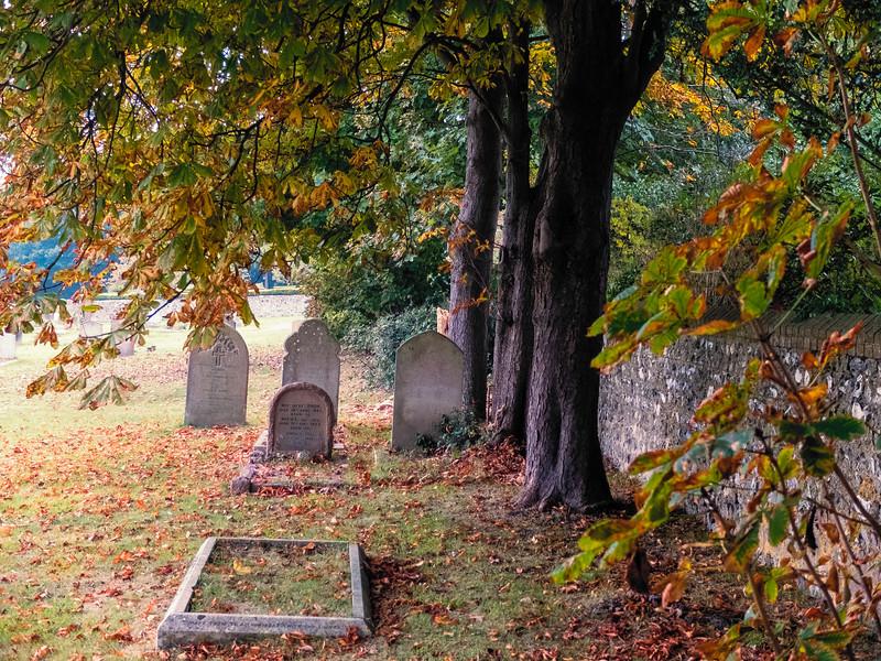 Lewes Cemetery Autumn