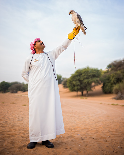The Emirati Bird of Prey (Dubai Desert Conservation Reserve, United Arab Emirates 2017)
