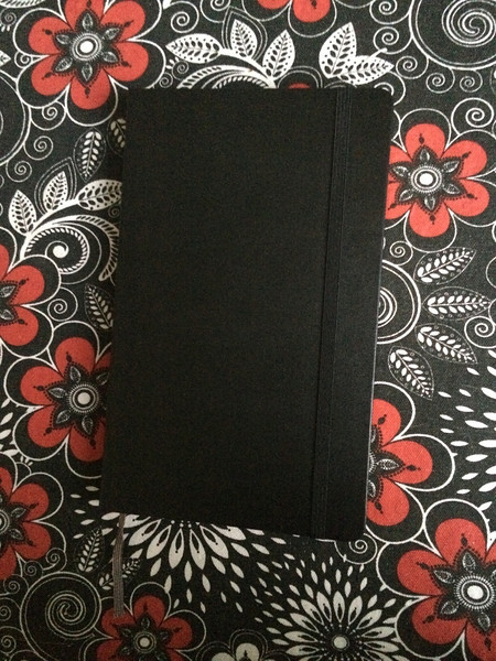 Large Moleskin Journal