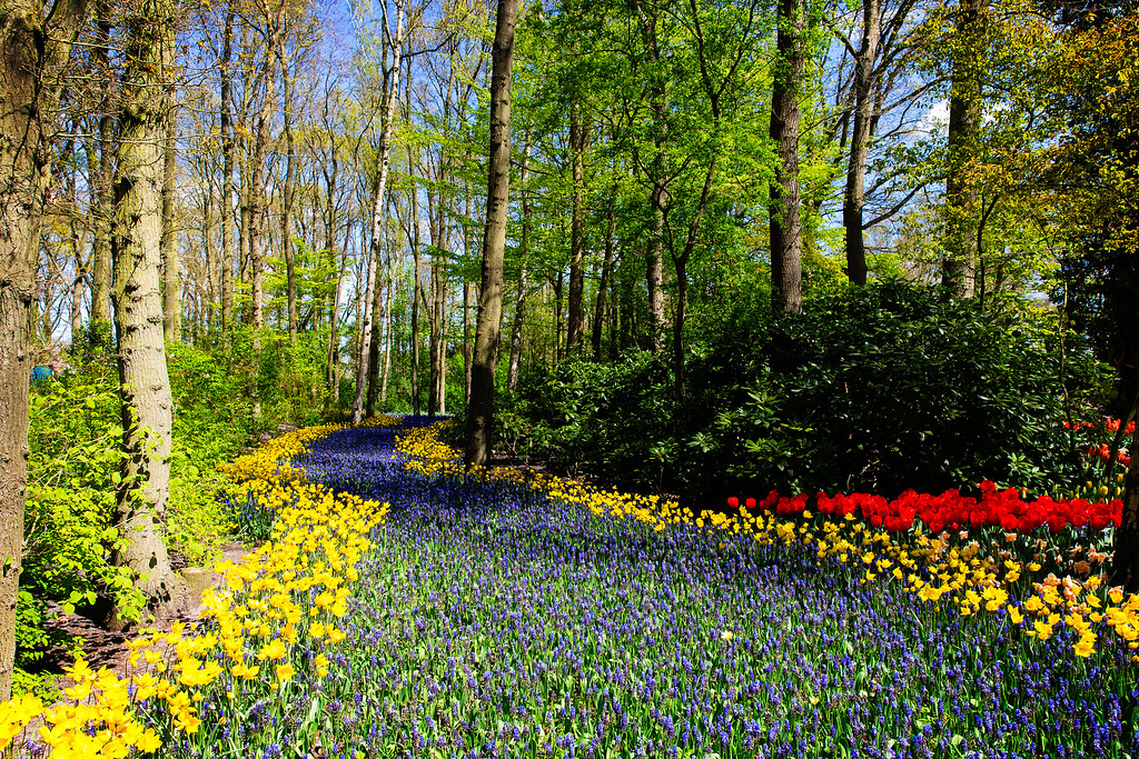 The Garden of Europe (Lisse, Netherlands 2015)