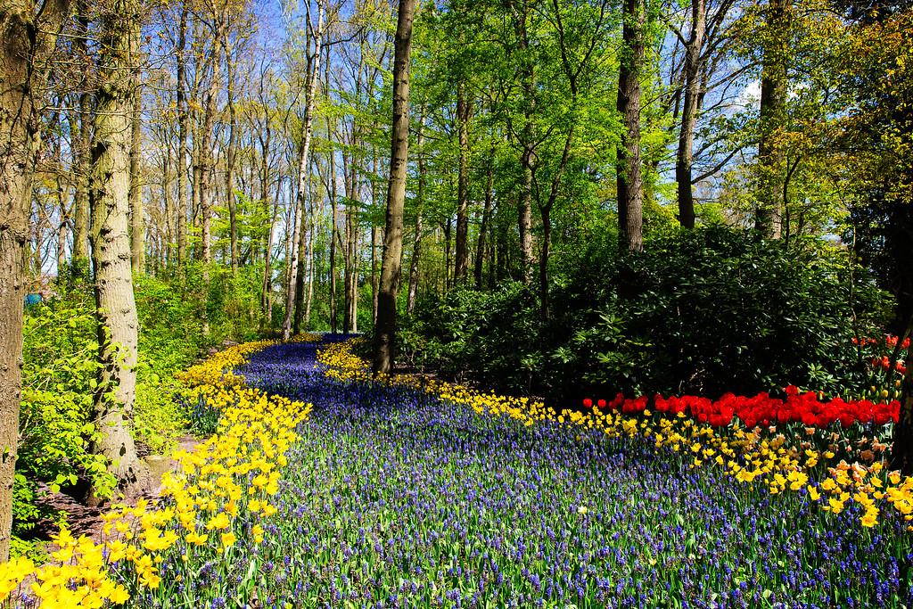 The Garden of Europe (Lisse, Netherlands 2015)