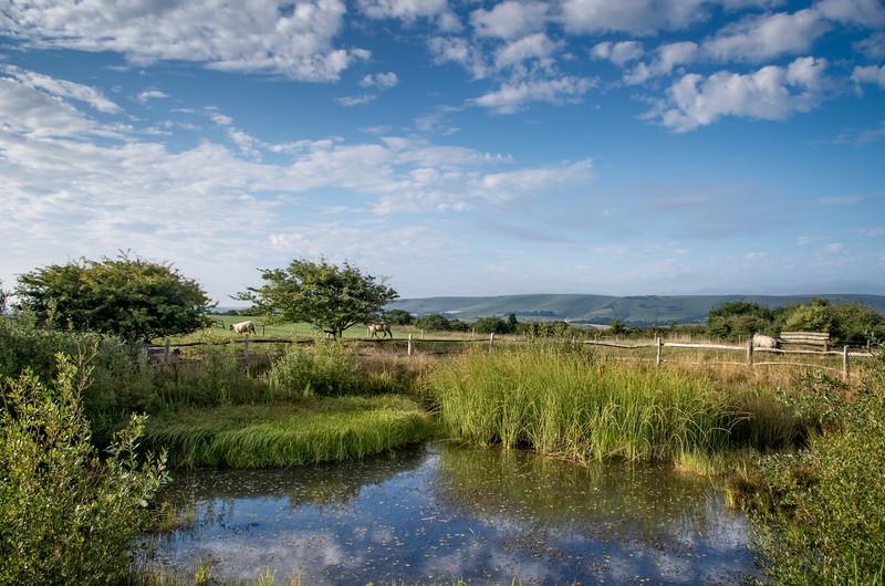 Jill's Pond