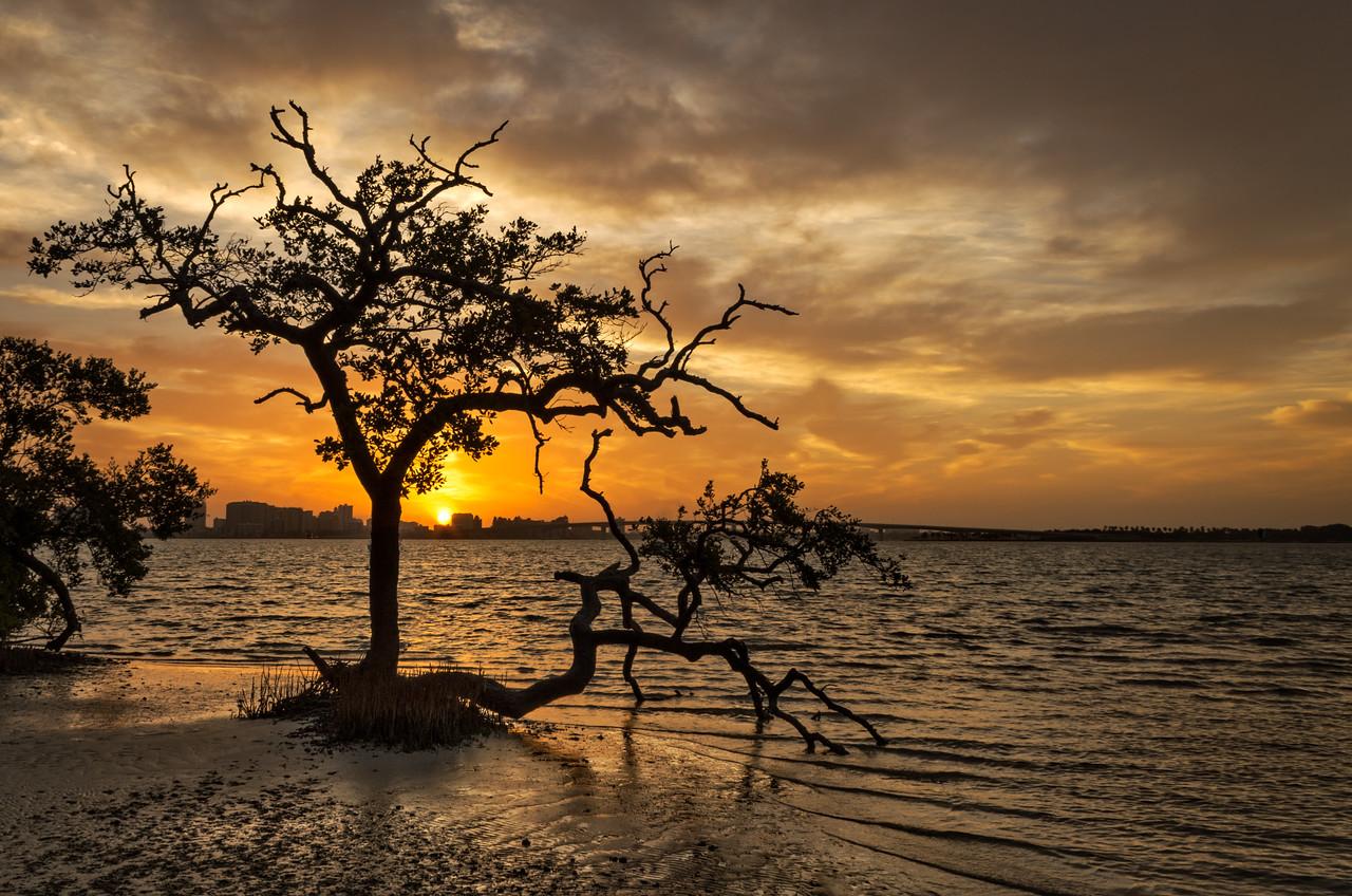 Sunrise over Sarasota