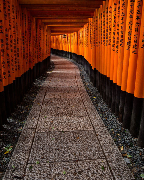 The Magnificent Torii Gates at Fushimi Inari Shrine (Kyoto, Japan 2015)