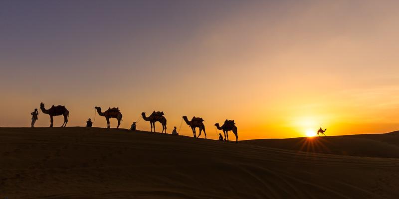 The Caravan (Thar Desert, India 2015)