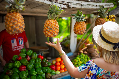 Piña Stop (Holguin, Cuba 2018)