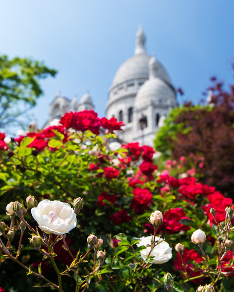 Lost in Montmartre (Paris, France 2014)