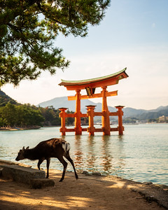 The sacred Itsukushima Shinto Shrine Torii (Miyajima, Japan 2015)