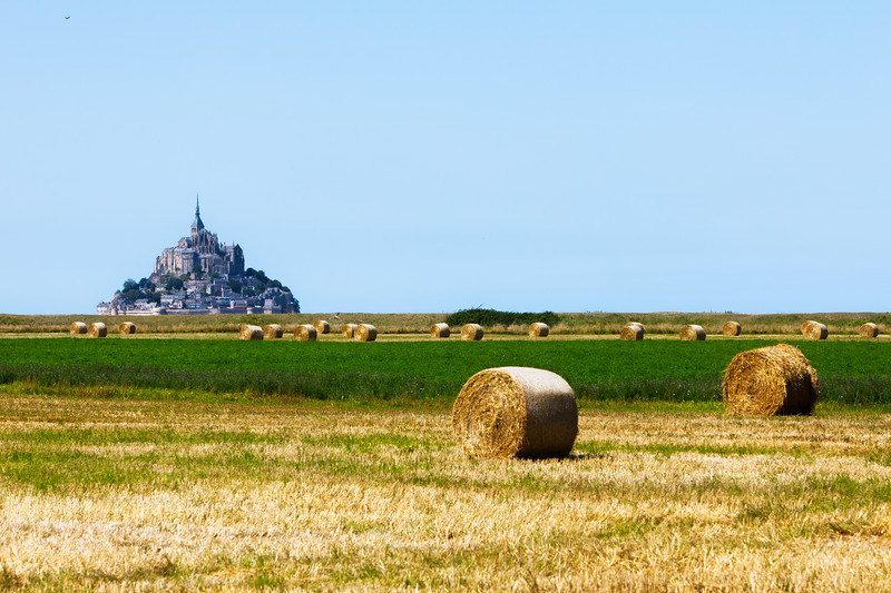 The Salt Marshes of Mont-St-Michel (Normandy, France 2013)