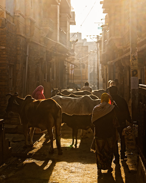 As the city awakens (Jaisalmer, India 2015)