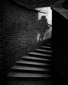 Chasing Shadows (London, United Kingdom 2016)
