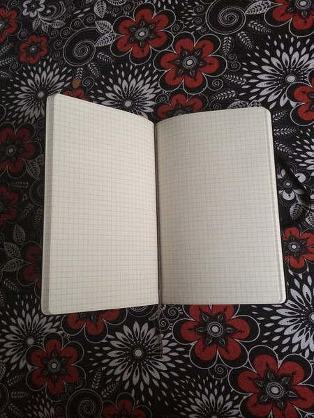 Large Moleskin Journal Inside