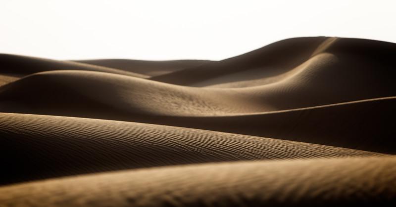 The Shifting Sands (Arabian Desert, United Arab Emirates 2017)