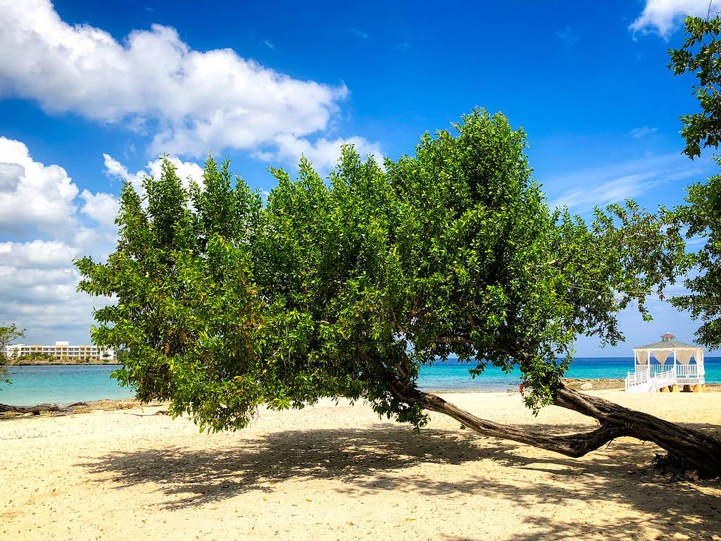 Playa Pesquero (Guardalavaca, Cuba 2018)