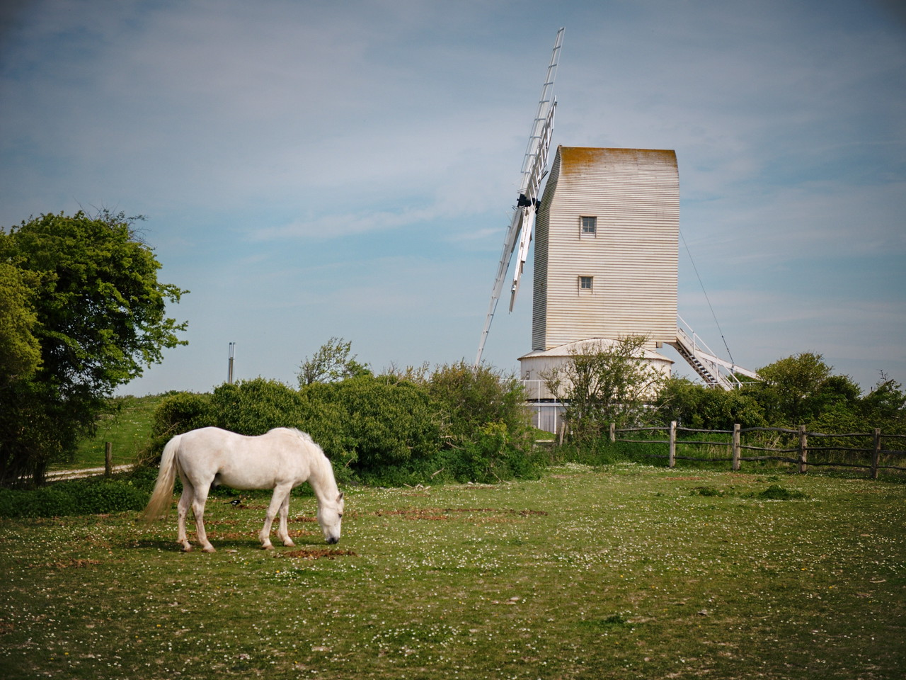 Horse and Mill