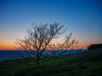 South Downs after Sunset