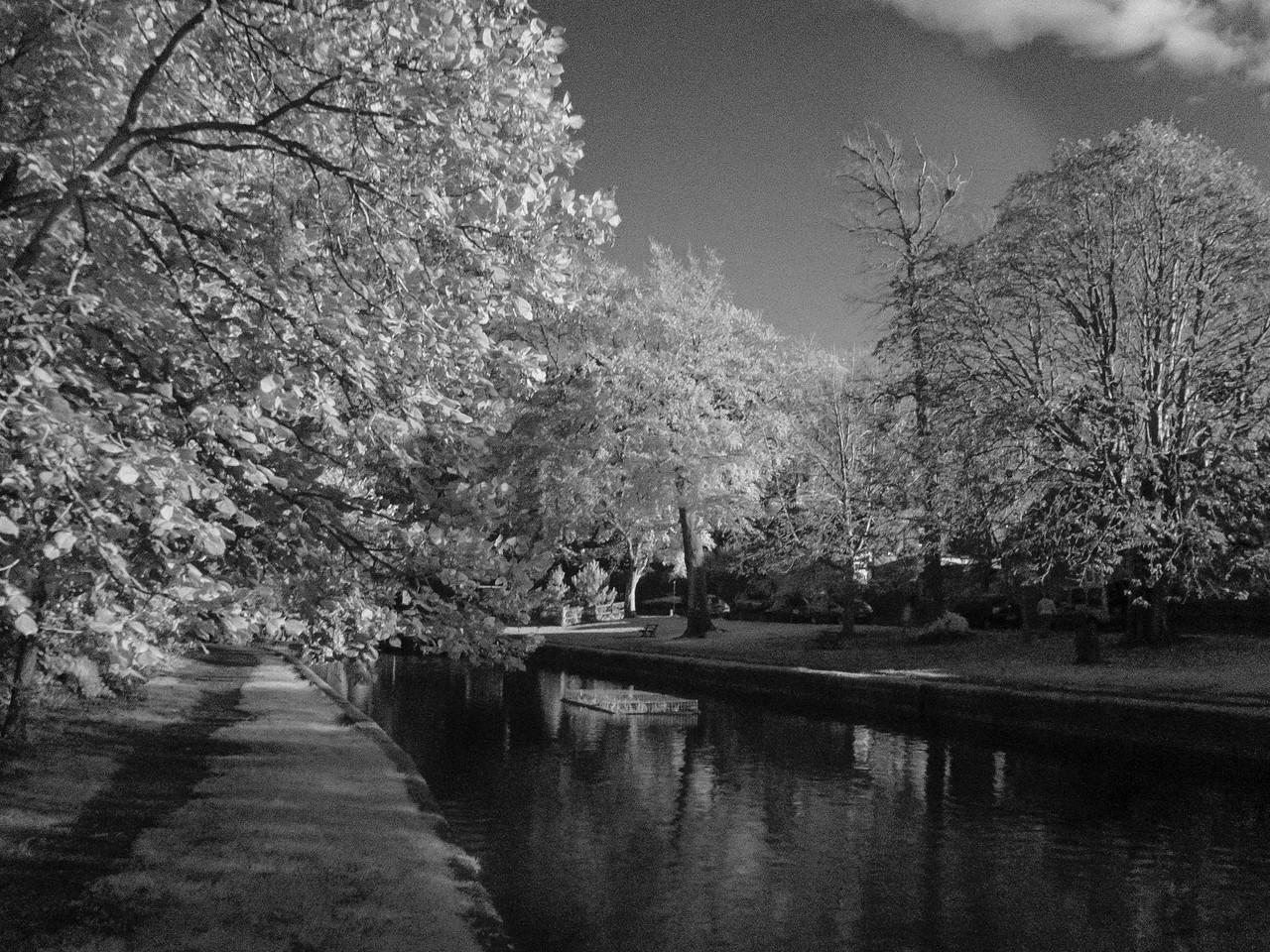 Autumn in Lewes