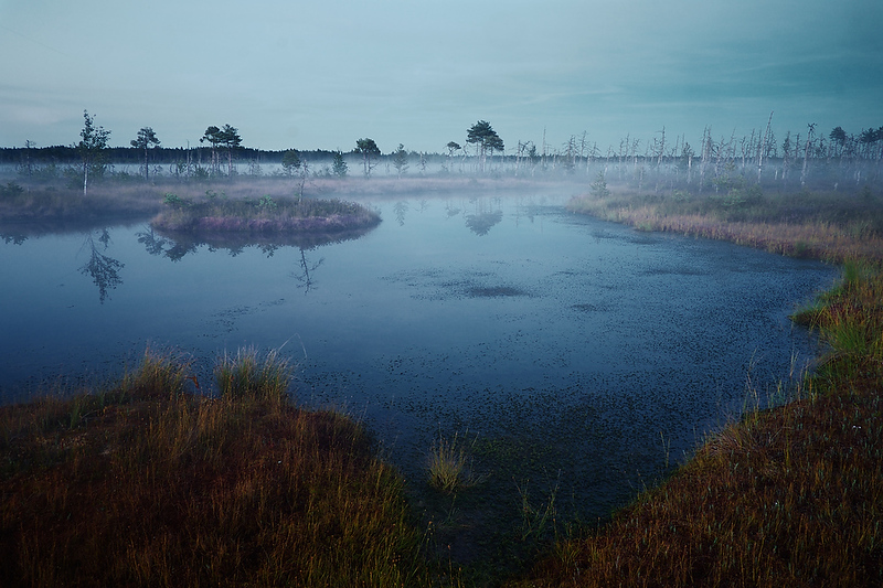 Small lake covered by mist in Grate Kemeri Moor
