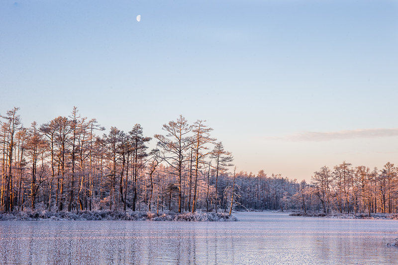 Frozen lake Skaists in Cenas moor