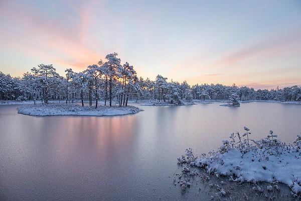 Frozen lake in Cenas moor