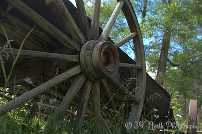 Vicksburg Wagon Wheel by Laurie H.