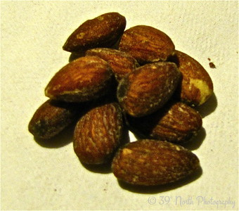 ALMONDS, a daily dose by Mikki K.