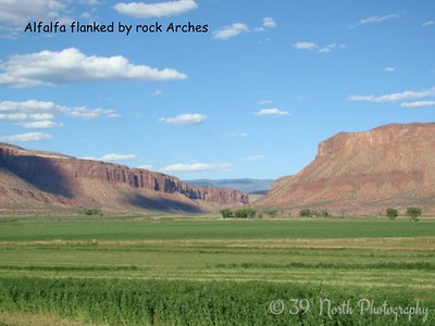 Alfalfa Flanked by Rock Arches by Sandi P.