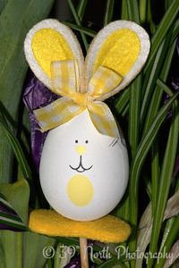 Easter Egg Bunny by Laurie H.