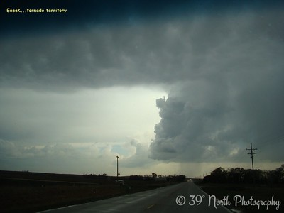 EeeeK...tornado territory by Sandi P.