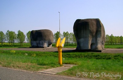 Concrete elephants by Norma H.