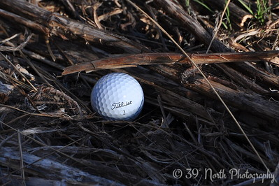 Golfball in the Rough by Laurie H.