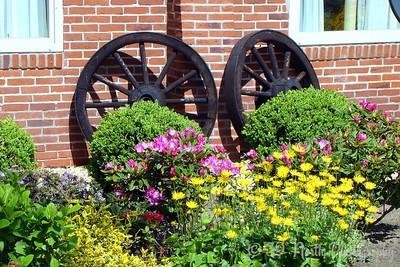 Garden by Norma H.