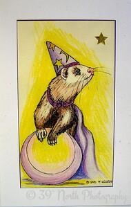 """Ink Drawing """"Weazel Wizzard"""" by Mikki K."""